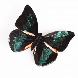 Haarspange Haarclip Falter Insekt Schmetterling schwarz grün Glanz realistisch Echtleder